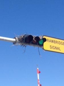 drawbridge nest