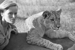 Born-Free-Viginia-McKenna-lion