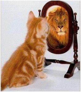 Confident-full