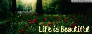 life_is_beautiful-42788
