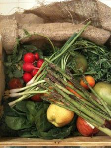 A typical box from Pacific Coast Harvest CSA. [Image credit: pacificcoastharvest.com]