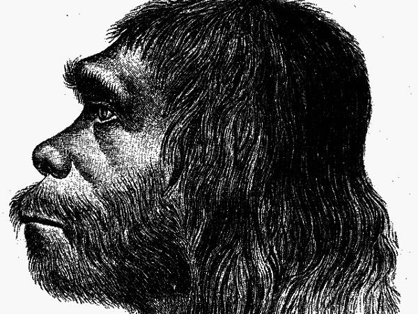 1_neanderthal