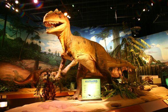 PSC Allosaurus