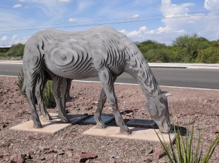 Disappearing Horse
