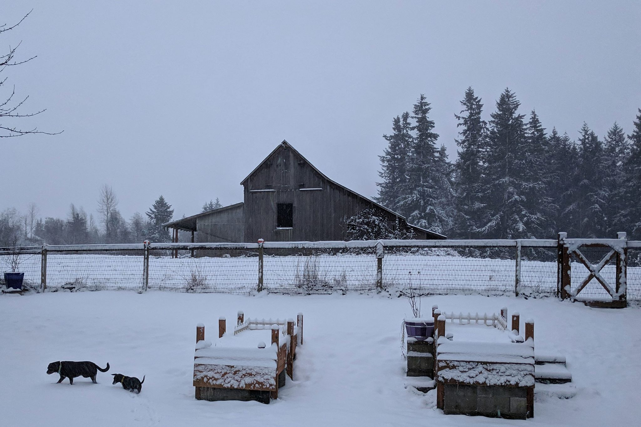 Winter barn with no door