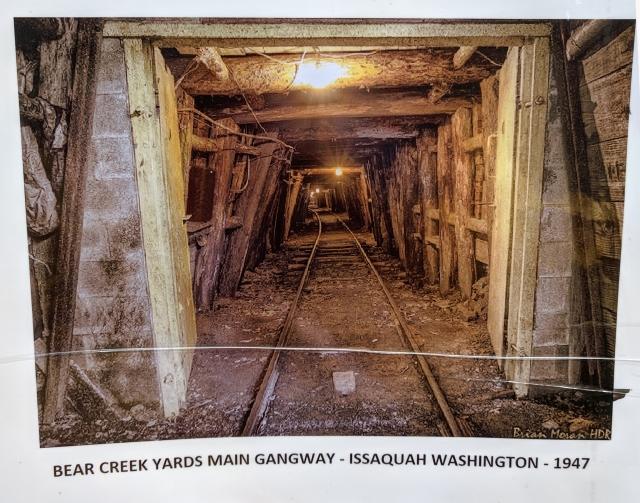Mine - Bear Creek Yards.jpg