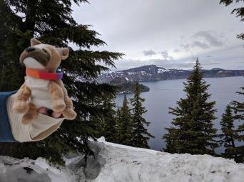 Travel Dog Crater Lake