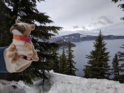 Travel Dog Crater Lake