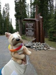 Travel Dog Crater Lake2