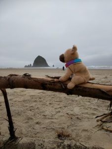 Travel Dog Haystack Rock