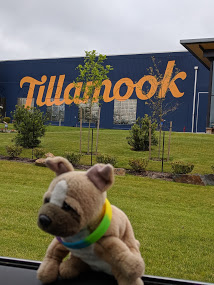 Travel Dog Tillamook Creamery