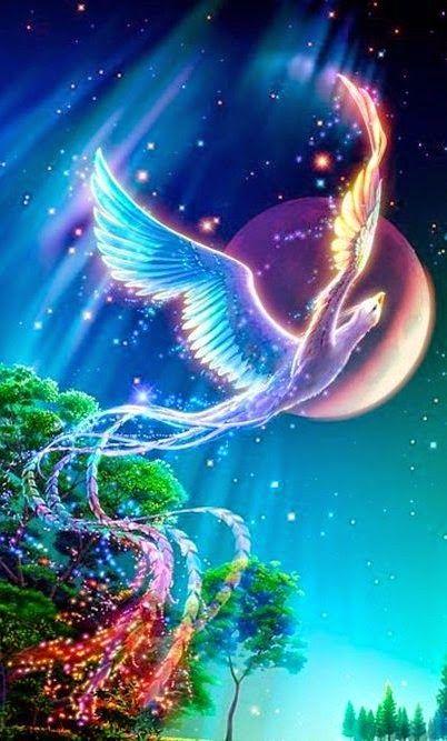 Moon Phoenix