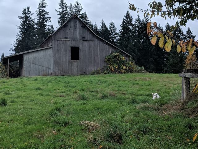 barn-door-missing