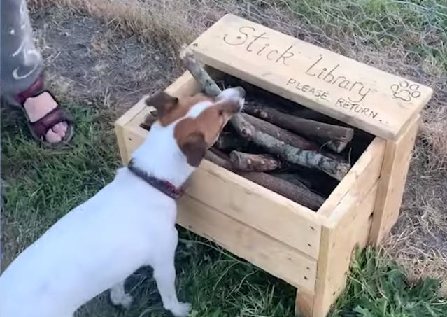 Stick Library