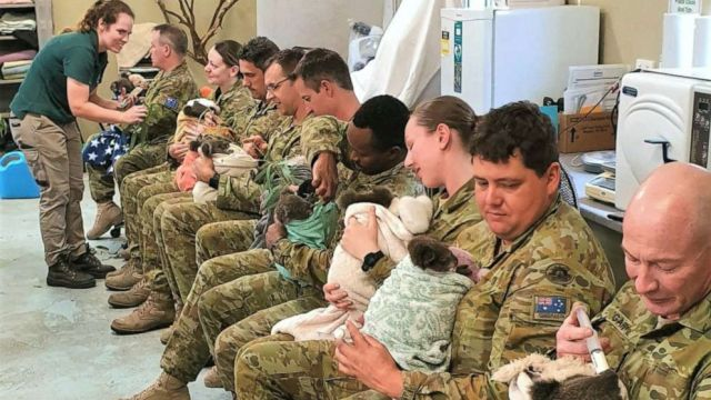 aussie-army-koala-care-01-ht-jef-200128_hpMain_16x9_992