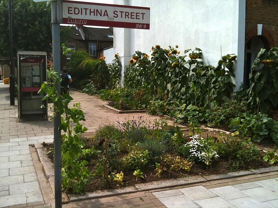 Edible Bus Stops!
