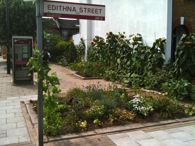 Edible Bus Stops!